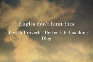Eagles-dont-hunt-flies
