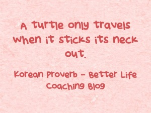 A-turtle-only-travels